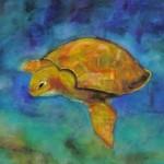 Turtle by Paula Atwell